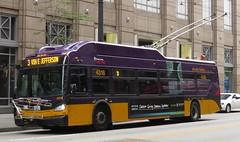 King County Metro 2015 New Flyer XT40 4318 (zargoman) Tags: seattle county travel bus electric king metro trolley transportation transit kiepe elektrik kingcountymetro newflyer lowfloor xcelsior