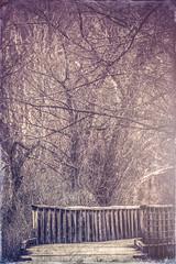 Vintage Bridge (danielnordick) Tags: wood bridge vintage walk grunge damaged splittone