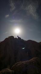 mountain dog (alanthebox) Tags: camping easternsierras alabamahills lonepineca lumia950