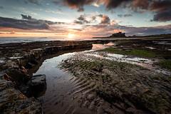 One Man & His Dog (f22 Digital Imaging) Tags: seascape sunrise landscape northumberland bamburgh bamburghcastle northeastengland bamburghbeach