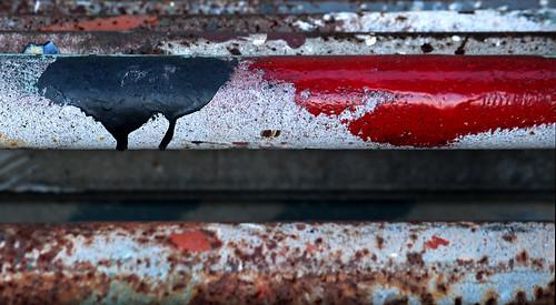 Paint at Gloucester Marine Railways_3067