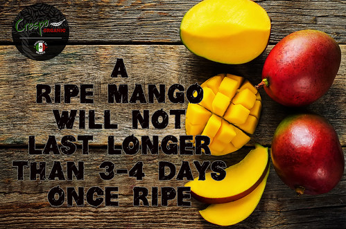 """Mango Ripe • <a style=""""font-size:0.8em;"""" href=""""http://www.flickr.com/photos/139081453@N03/25871099302/"""" target=""""_blank"""">View on Flickr</a>"""