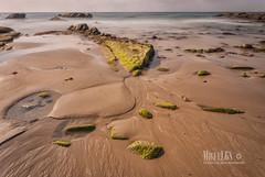 (miguel68) Tags: andaluca arena cdiz bajamar rocas tarifa playasdetarifa