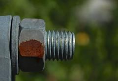 visserie (bulbocode909) Tags: vert rouille visseries ferrailles