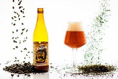 DSC_6458 (vermut22) Tags: beer bottle beers brewery birra piwo biere beerme beertime browar butelka