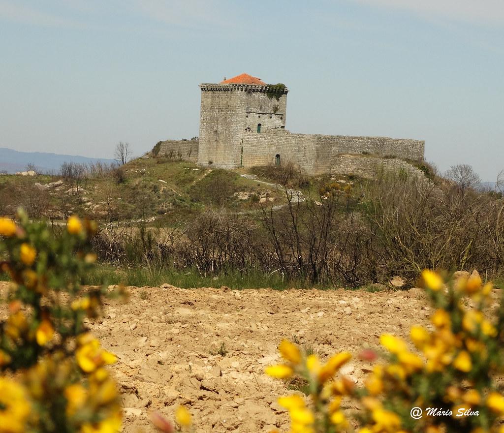 Águas Frias (Chaves) - ... Castelo de Monforte de Rio Livre entre flores silvestres ...