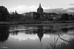 (Fede Z.) Tags: blackandwhite bw panorama parco river ticino fiume biancoenero pavia