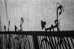 Schattenseiten der Fahrradstadt (chipsmitmayo) Tags: city shadow blackandwhite film bike bicycle rollei analog minolta 150 25 rodinal asphalt schwarzweiss xd7 schatten f28 fahrrad mnster 135mm boden westfalen rennrad selfdeveloped gelnder lenker rokkor adonal kleinbild fahrradstadt rpx selbstentwickelt fahrradfreundlich