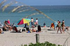 IMG_0070 (Mike H Photography) Tags: blue sea sky sun beach water relax florida joy sunny dania