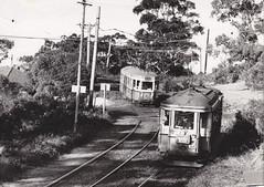 Remembering Sydney's trams! Last days of the North Sydney lines ... Balmoral 1958. (john cowper) Tags: sydney 1958 newsouthwales trams northsydney lastdays rclass oclass balmoralline