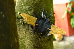 Flying Atlas Beetle by  Benjamin Donahue (alfantoutanaya39) Tags: paper insect flying origami outdoor beetle craft atlas