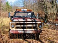 FORD F-600 FLATBED (richie 59) Tags: trees usa ny newyork america truck outside us spring weeds junk rust unitedstates weekend sunday rusty headlights grill vehicles faded rusted rusting newyorkstate junkyard autos oldtruck automobiles nys fordtruck nystate flatbed rustytruck frontend hudsonvalley 2016 2door motorvehicles junktruck fadedpaint ulstercounty twodoor americantruck junkcars oldfordtruck midhudsonvalley fordmotorcompany flatbedtruck midhudson ulstercountyny ustruck fordf600 2010s rustyford fordflatbed richie59 rustyfordtruck townofshawangunk townofshawangunkny april2016 april171016