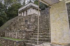 Zona Arqueologica Bonampak - Ocosingo, Chiapas (Cuernavaca, Morelos Mexico) Tags: mexico nikon selva palenque chiapas zona mayas usumacinta piedras yaxchilan bonampak estela arqueologica ocosingo d5300 lancandona