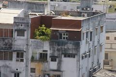 day_view_2944 (Manohar_Auroville) Tags: houses streets eye pool birds night day views luigi pondicherry fedele pondy manohar atithi puducherry