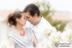 Maternity Session (Chris Patoni Photography) Tags: family maternity softfocus maternidad