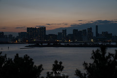 Baha de Tokyo y Rainbow Bridge (Japn Entre Amigos) Tags: tokyo odaiba rainbowbridge