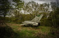 DSC_8037 (Photographe-Runner) Tags: plane lost decay avion mig urbex abandonn