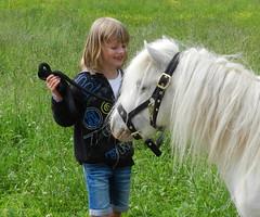 Flocki unser Pony