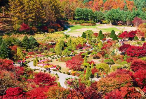 Giảm 4 triệu đồng tour đón Tết cổ truyền tại Hàn Quốc