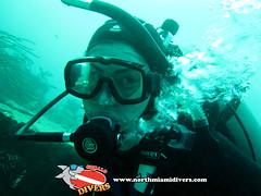Learning to Scuba Dive in Miami-Jan 2016-22 (Squalo Divers) Tags: usa divers florida miami scuba diving learning padi ssi squalo