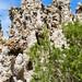 Tufa Natural Reserve