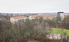Elineberg - december 2015