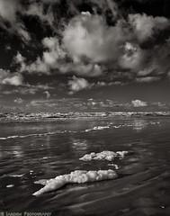 Seaside Foam (mjardeen) Tags: bw white black texture beach clouds oregon reflections landscape blackwhite seaside sand outdoor or sony tide 28mm foam f2 fe drama 282 a7ii landscapesshotinportraitformat niksilverefex a7m2