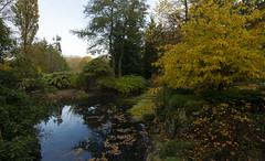 Botanical garden, Gothenburg (hkkbs) Tags: göteborg sweden gothenburg sverige westcoast botanicalgarden västkusten botaniskaträdgården dsc6168 nikond800 tamronafsp153028divcusd