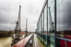 #39 Converging Cranes (Yelsel_R) Tags: windows reflection lines bristol somerset cranes dockside converging mshed lesleyrands