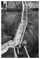 La descente... (DavidB1977) Tags: bw france nikon eau nb iledefrance 18105 valdemarne canalisation sucyenbrie d7100 ormessonsurmarne parcdpartementaldumorbras