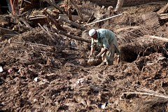 AZ_Pak_Flood_20 (UN Women Asia & the Pacific) Tags: water rain river flooding mud flood destruction monsoon collapse naturaldisaster heavyrain mudhuts pakistanpakistan waterlevels displacedpeople environmentalproblems highwaterlevels environmentclimatechange khyberpakhtunkhwakhyberpakhtunkhwa