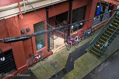 _1GM6242-Edit (munn1) Tags: urban canada rain sign nikon britishcolumbia decay grunge nik 247028 nikor d4s photoshopcc lightroomcc 20160130newwestparkade