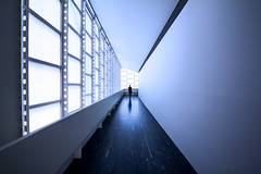 Blue Corridor (C_MC_FL) Tags: vienna wien blue light woman reflection lines silhouette architecture modern canon person photography eos austria licht sterreich alone fotografie gang corridor sigma symmetry hallway architektur blau frau 1020mm 35 spiegelung futuristic reflektion symmetrie linien futuristisch alleine kontur symmetrisch 60d 21erhaus