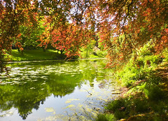 Summer Reflections! ('cosmicgirl1960') Tags: trees red sky lake green nature water leaves gardens bush parks stourhead hedges yabbadabbadoo