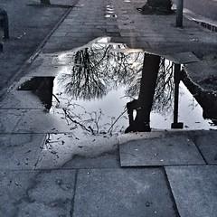 Early Morning Reflections (padraic collins) Tags: london londonbridge borough se1 longlane