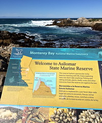 Welcome to Asilomar (tmvissers) Tags: ocean california beach sign monterey marine rocks state pacific grove reserve peninsula asilomar