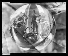 (Attila Pasek) Tags: bw plant macro alarm clock film window glass ball model scan pot sphere xray figure refraction 4x5 largeformat graflex kodakektar anniversaryspeedgraphic 127mmf47