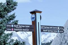 _1190519.jpg (Bucky-D) Tags: ca canada mountains rockies alberta banff bowriver bowfalls banffnationalpark canadianrockies fz1000