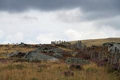L'averse en Aubrac (Yvan LEMEUR) Tags: france landscape pluie nuages paysage extrieur randonne clture lande aubrac mtorologie muret averse lozre bruyre muretdepierressches