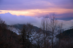 Towards to a night tale... (RKAMARI) Tags: travel autumn trees mountains colour fall nature fog clouds forest nationalpark purple outdoor cities serenity bolu yedigller flickrsbest