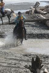 IMG_EOS 7D Mark II201604030535 (David F-I) Tags: horse equestrian horseback horseriding trailriding trailride ctr tehapua watrc wellingtonareatrailridingclub competitivetrailriding sporthorse equestriansport competitivetrailride april2016 tehapua2016 tehapuaapril2016 watrctehapuaapril2016