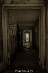 IMG_7142 (ydnA uaL) Tags: istana woodneuk