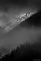 Tannheimer Tal - Gaishorn (MC-80) Tags: mist mountain mountains alps berg clouds austria tirol österreich nebel foggy wolken moonlight alpen tyrol mountaintop tannheim mondlicht tannheimertal vilsalpsee tannheimerberge gaishorn