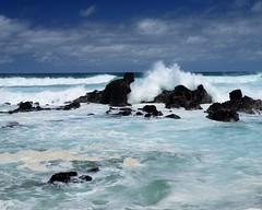 DSC_5270 e5 (J Telljohann) Tags: hawaii maui hookipa