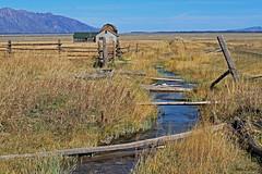 Old Homestead  Mormon Row (Wonder Woman !) Tags: usa nationalpark stream homestead wyoming grandteton mormonrow