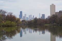 Spring in Chicago (Tashka87) Tags: chicago architecture reflections illinois sony urbanjungle lincolnpark northpond sonyimages sonya6000