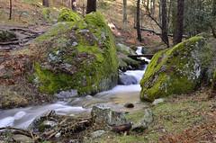 En mitad del bosque (Txemari Roncero) Tags: longexposure naturaleza nature water rio forest river landscape agua nikon rocks paisaje bosque arroyo piedras largaexposicin sierrademadrid txemari nikkor1685 nikond7000 txemarironcero
