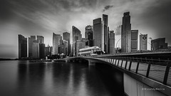 Jubilee bridge BW (Rizaldy Norca) Tags: bridge jubileebridge marinabay tokina124 singaporebridge