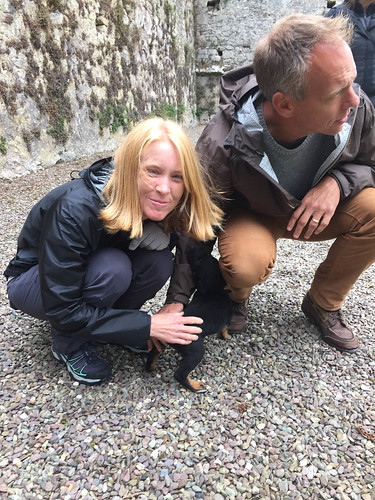 We found a puppy at Bridgetown Priory