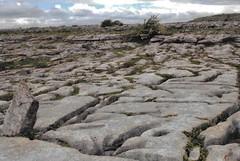 The Burren - West Ireland - 2007 (stevelamb007) Tags: rock natural nature stevelamb westireland burren ireland